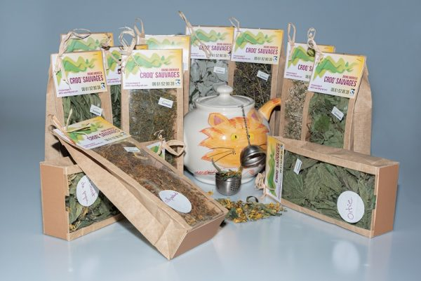 tisanes de plantes sauvages, élaborées par croqsauvages en auvergne, sur laloop